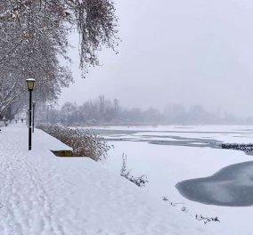 Πάγωσε η λίμνη της Καστοριάς – Πανέμορφο το κατάλευκο τοπίο (φωτό) - Κυρίως Φωτογραφία - Gallery - Video