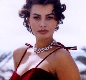 Vintage pic: Η Sophia Loren και το αξεπέραστο  στυλ της - Με γούνα υπέρ παραγωγή το 1964 - Κυρίως Φωτογραφία - Gallery - Video