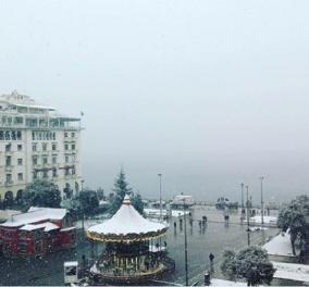 Η πλατεία Αριστοτέλους στα λευκά χιονισμένη - Από το φακό της Χριστίνας Πολίτη (φώτο) - Κυρίως Φωτογραφία - Gallery - Video