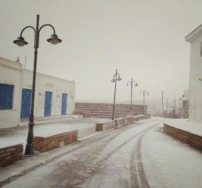 Ναι, αυτό είναι το νησί της Τήνου - Χιόνια ακόμα και στις κατοικημένες περιοχές! (Φωτό) - Κυρίως Φωτογραφία - Gallery - Video