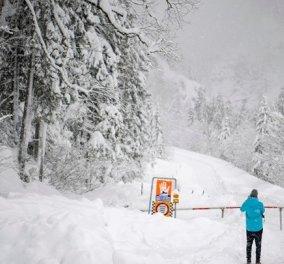 Βαρύς χιονιάς στην Γερμανία -Αυστρία: 9 νεκροί, εκκενώθηκαν χιονοδρομικά κέντρα, δραματικές ιστορίες & οι τελευταίες στιγμές των άτυχων σκιέρ (φωτό & βίντεο) - Κυρίως Φωτογραφία - Gallery - Video