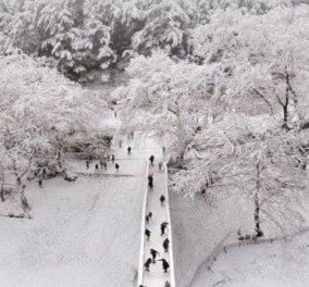 Έκτακτο δελτίο ΕΜΥ: Έρχεται νέα επιδείνωση του καιρού από Δευτέρα -  θυελλώδεις άνεμοι, καταιγίδες, χιόνια και παγετός   - Κυρίως Φωτογραφία - Gallery - Video