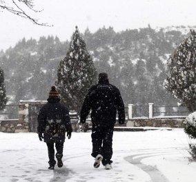 Καιρός: Έρχονται χιόνια και κατακόρυφη πτώση της θερμοκρασίας - Πότε θα χιονίσει στην Αθήνα - Κυρίως Φωτογραφία - Gallery - Video