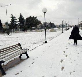 «Χιόνη»: Η κακοκαιρία που θα φέρει χιόνια ακόμα και στην Αττική - Δείτε πώς θα εξελιχθεί τις επόμενες ημέρες (Βίντεο) - Κυρίως Φωτογραφία - Gallery - Video