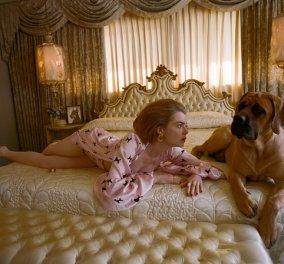 """Ο Γιώργος Λάνθιμος φωτογραφίζει την """"dog lady"""", Έμμα Στόουν ως νοικοκυρά! - Κυρίως Φωτογραφία - Gallery - Video"""