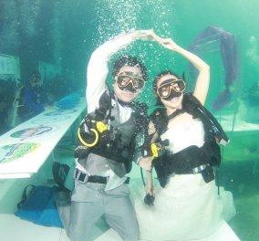 Ερωτεύθηκαν στη γη και παντρεύτηκαν όλοι μαζί κάτω από τη θάλασσα  (φώτο-βίντεο) - Κυρίως Φωτογραφία - Gallery - Video