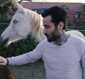 Το μήνυμα του Γιώργου Μαυρίδη για τα κακοποιημένα άλογα, γαιδουράκια και μουλάρια του Ελληνικού Συλλόγου Προστασίας Ιπποειδών - Κυρίως Φωτογραφία - Gallery - Video