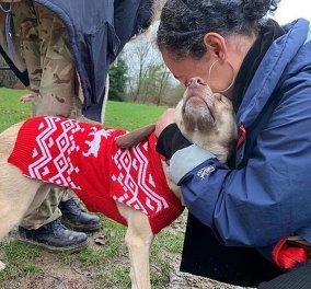 Βίντεο: Αυτό το σκυλί πυροβολήθηκε 17 φορές & όμως είναι Survivor! - Κυρίως Φωτογραφία - Gallery - Video