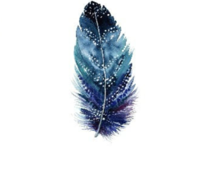 Ποιο είναι το μήνυμα της ψυχής σας; Ανακαλύψτε το επιλέγοντας το φτερό που σας ελκύει! - Κυρίως Φωτογραφία - Gallery - Video