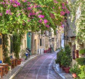Η πιο παλιά & γραφική γειτονιά της Αθήνας εκπέμπει SOS - 83 κάτοικοι στα Αναφιώτικα απαιτούν καθαριότητα & ησυχία - Η επιστολή    - Κυρίως Φωτογραφία - Gallery - Video