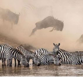 10 top φωτογραφίες από το Instagram του National Geographic - 100 εκατομμύρια συμμετοχές από χρήστες - Κυρίως Φωτογραφία - Gallery - Video