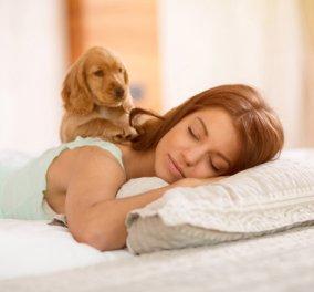Πώς επηρεάζει το ανοσοποιητικό και την ταχύτητα γήρανσης η διάρκεια του ύπνου   - Κυρίως Φωτογραφία - Gallery - Video