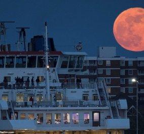 Ροζ πανσέληνος: Το φεγγάρι που σηματοδοτεί την άνοιξη μάγεψε τον κόσμο - Δείτε τις συναρπαστικές εικόνες (φώτο) - Κυρίως Φωτογραφία - Gallery - Video