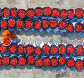 Φωτό-κουίζ: Εσείς τι νομίζετε ότι είναι αυτάτα ωραία κατακόκκινα καλάθια εκεί κάτω; - Κυρίως Φωτογραφία - Gallery - Video