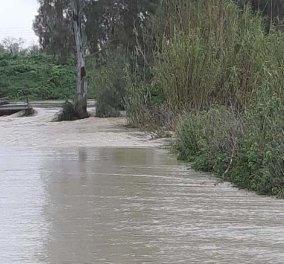 Αντιμέτωπη ξανά με τη θεομηνία η Κρήτη: Πλημμύρες & κατολισθήσεις - Αυτοκίνητα παρασύρθηκαν (φώτο-βίντεο) - Κυρίως Φωτογραφία - Gallery - Video