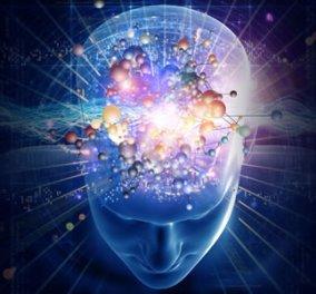 Νέα μελέτη: Ο ανθρώπινος εγκέφαλος παράγει νέα εγκεφαλικά κύτταρα μέχρι τα 90! - Κυρίως Φωτογραφία - Gallery - Video