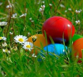Τι συμβουλεύει ο ΕΦΕΤ για το Πάσχα: Προσοχή στην αγορά κρέατος και νωπών αυγών - Κυρίως Φωτογραφία - Gallery - Video
