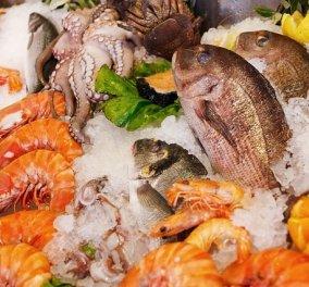 Απ' το Πασαλιμάνι ως το Σούνιο: 9 απίθανα παραθαλάσσια μαγαζιά για νόστιμα ψάρια και αποδράσεις εντός Αττικής  - Κυρίως Φωτογραφία - Gallery - Video