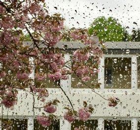Καιρός: Μη σας ξεγελάει ο ήλιος - Οι βροχές επιμένουν - Έρχεται νέα επιδείνωση  - Κυρίως Φωτογραφία - Gallery - Video