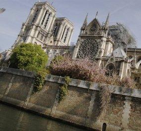 Ιδού 7 διαφορετικές & εναλλακτικές προτάσεις για το «Seven alternative designs for the new Notre-Dame spire» (φώτο) - Κυρίως Φωτογραφία - Gallery - Video