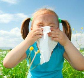 Πώς να επιβιώσεις από τις αλλεργίες της άνοιξης! - Κυρίως Φωτογραφία - Gallery - Video