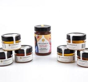 Made in Greece η Χρυσόμελο: Από υπάλληλος της Δημοτικής αστυνομίας μελισσοκόμος - Το success story του Γιάννη & της γυναίκας του -Εξάγουν σε 14 χώρες - Κυρίως Φωτογραφία - Gallery - Video