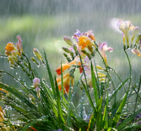 Καιρός: Υποχωρούν οι θερμοκρασίες - φωτιά: Επιστρέφουν οι βροχούλες  - Κυρίως Φωτογραφία - Gallery - Video