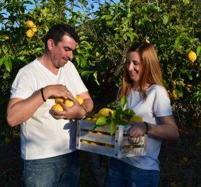 Αποκλειστικό – Made in Greece το «Λεμονοδάσος»: Η παραδεισένια γη του Γαλατά γέννησε έναν έρωτα & μία υπέροχη λεμονάδα - Κυρίως Φωτογραφία - Gallery - Video