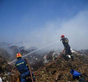 Σε εξέλιξη η πυρκαγιά κοντά στον ΧΥΤΑ Φυλής - Εντοπίστηκε νεκρός ένας άνδρας σε χώρο του εργοστασίου   - Κυρίως Φωτογραφία - Gallery - Video