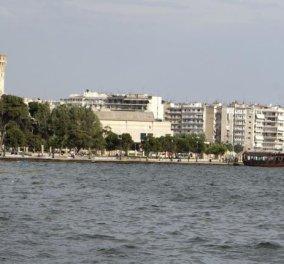 Μπρρρρ - Γέμισε νεκρούς αρουραίους ο Θερμαϊκός — Ανάστατη η Θεσσαλονίκη (φωτό) - Κυρίως Φωτογραφία - Gallery - Video