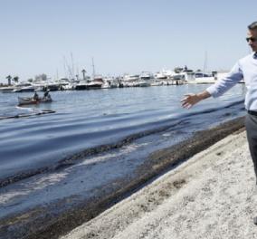 Μανόλης Καψής: Βασανίζει ο Μητσοτάκης τις χελώνες καρέτα-καρέτα; - Κυρίως Φωτογραφία - Gallery - Video