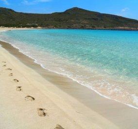 Να περπατάς στις χρυσαφένιες παραλίες της Ελαφονήσου... Αξία ανεκτίμητη - Υπέροχη η φωτογραφία της ημέρας - Κυρίως Φωτογραφία - Gallery - Video
