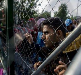 Χρυσοχοΐδης στη Μόρια  - Κουμουτσάκος στη Σάμο: ''Τραγική κατάσταση στα κέντρα προσφύγων'' (βίντεο)  - Κυρίως Φωτογραφία - Gallery - Video