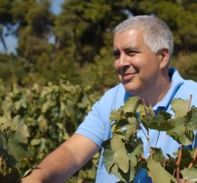Made in Greece το Κτήμα Χαρλαύτη: 80 χρόνια μεράκι & αγάπη για το κρασί στο παραδοσιακό οινοποιείο της Σταμάτας - Κυρίως Φωτογραφία - Gallery - Video