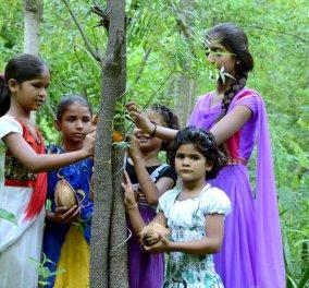Story of the day: Το χωριό στην Ινδία που, κάθε φορά που γεννιέται ένα κορίτσι, φυτεύει 111 δέντρα - Κυρίως Φωτογραφία - Gallery - Video