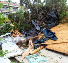 Aγώνας δρόμου για την αποκατάσταση της ηλεκτροδότησης & των ζημιών στη Χαλκιδική - Κυρίως Φωτογραφία - Gallery - Video