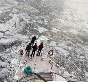 Η κλιματική αλλαγή είναι εδώ: Καύσωνας στο Βόρειο Πόλο - 21 βαθμοί η θερμοκρασία - απόλυτο ρεκόρ - Κυρίως Φωτογραφία - Gallery - Video