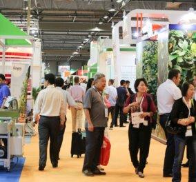 ASIA FRUIT LOGISTICA 2019: Στο Χονγκ Κονγκ 5 made in Greece επιχειρήσεις για να εκθέσουν τα προϊόντα τους - Κυρίως Φωτογραφία - Gallery - Video