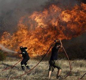 Η πιο επικίνδυνη μέρα για φωτιές – Ποιες περιοχές βρίσκονται σε κατάσταση συναγερμού; - Κυρίως Φωτογραφία - Gallery - Video