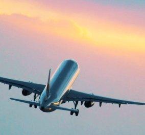 Άνδρας αεροσυνοδός απολύθηκε επειδή έκανε σεξ στο αεροπλάνο με διάσημο πορνοστάρ - Το βίντεο που τους πρόδωσε (φωτό) - Κυρίως Φωτογραφία - Gallery - Video