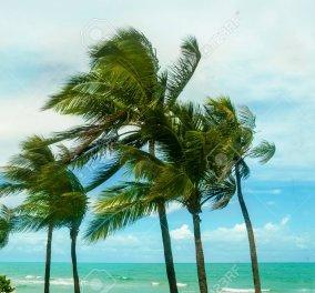 Αλλάζει το σκηνικό του καιρού - Πού αναμένονται βροχές και καταιγίδες την Τρίτη - Κυρίως Φωτογραφία - Gallery - Video
