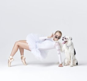 Χορευτές μπαλέτου & απίθανα σκυλάκια συντονίζονται σε μια χορογραφία που θα σας φτιάξει την ημέρα - Φώτο  - Κυρίως Φωτογραφία - Gallery - Video