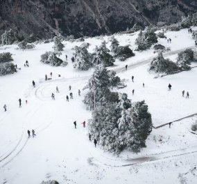 """Βίντεο: """"Ντύθηκαν στα λευκά"""" το Μέτσοβο & τα Τρίκαλα - Να λοιπόν τα πρώτα χιόνια του Χειμώνα   - Κυρίως Φωτογραφία - Gallery - Video"""