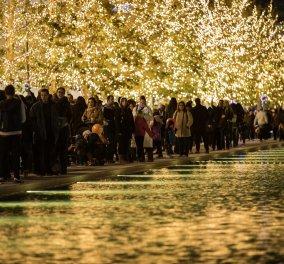 Ο Χριστουγεννιάτικος κόσμος του ΙδρύματοςΝιάρχου ζωντανεύει: Τα γιορτινά φώτα ανάβουν, κάθε γωνιά φωτίζεται και η πιο όμορφη εποχή του χρόνου ξεκινά! - Κυρίως Φωτογραφία - Gallery - Video