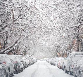 Ραγδαία επιδείνωση του καιρού: Τσουχτερό κρύο από σήμερα το βράδυ - Σε ποιες περιοχές θα χιονίσει  - Κυρίως Φωτογραφία - Gallery - Video