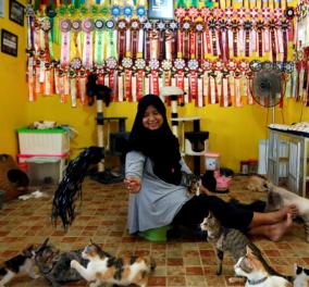 Ζευγάρι της Ινδονησίας έσωσε 250 γάτες & τώρα ζουν όλοι μαζί σαν μια οικογένεια - Κυρίως Φωτογραφία - Gallery - Video