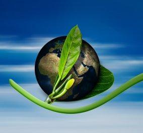 Ζέφη Δημαδάμα: Πράσινη Συμφωνία: Ένα φιλόδοξο σχέδιο, από την Ευρώπη - Κυρίως Φωτογραφία - Gallery - Video