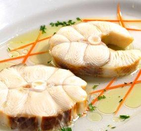 """Τελικά τρώμε γαλέο, σαλάχια  ή """"Μπλε καρχαρία""""; - Τα σοκαριστικά στοιχεία της έρευνας της οργάνωσης iSea  - Κυρίως Φωτογραφία - Gallery - Video"""