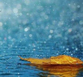 Καιρός: Σημαντική πτώση της θερμοκρασίας από σήμερα - Πού αναμένονται βροχές - Κυρίως Φωτογραφία - Gallery - Video