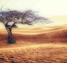 Παγκόσμια Διάσκεψη των Ηνωμένων Εθνών για το Κλίμα (COP25) : Ώρα να σοβαρευτούμε!   - Κυρίως Φωτογραφία - Gallery - Video